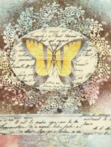 4682.Nature-collage-by-Kelly--Hoernig.jpg-550x0