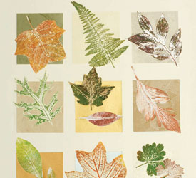 Nature Printing: The Nature of Art